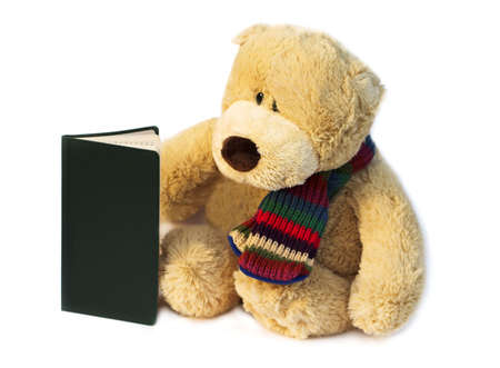Teddy has a diary and is looking to find Christmas Day Stock Photo