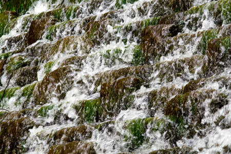 Water cascading over moss and weed covered steps photo