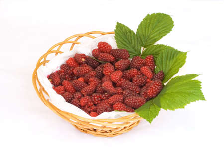 Basket of fresh picked tayberries on a bed of leaves