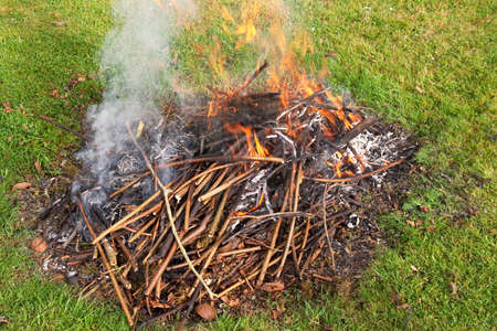 successful burning of early spring prunings