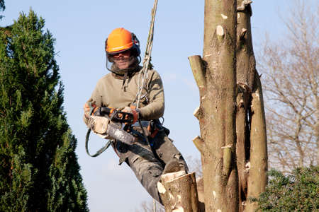 Man hanging in a tree, starting a chainsaw photo
