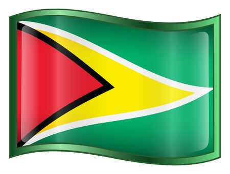 guyana: Guyana Flag icon. (With Clipping Path)