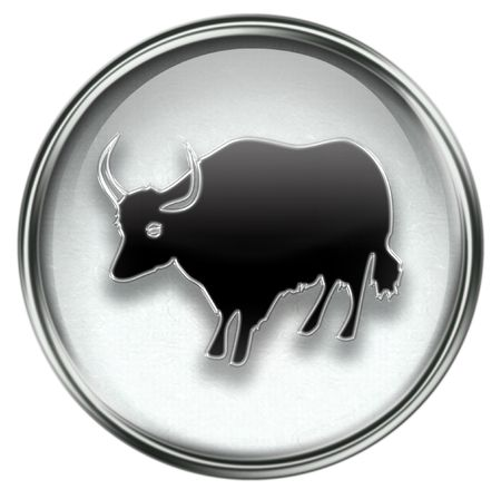 fortunetelling: Ox Zodiac icon grey, isolated on white background. Stock Photo