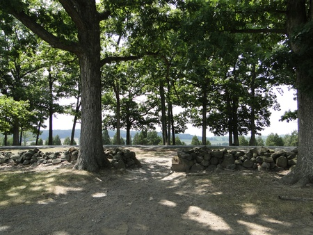 split rail: Trees at Pickets Charge