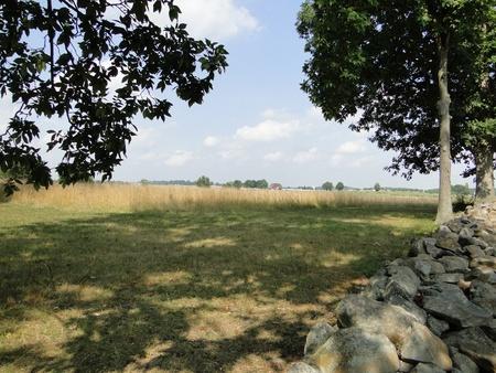 gettysburg battlefield: Treeline to Fields - Gettysburg Battlefield Pennsylvania Stock Photo