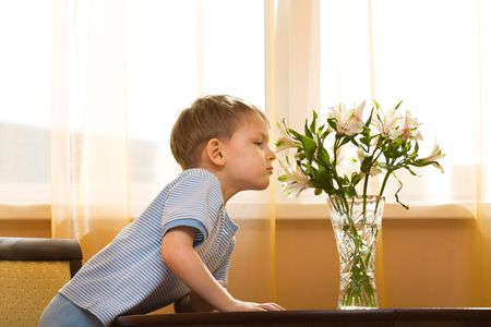 smells: Little boy smells a bouquet