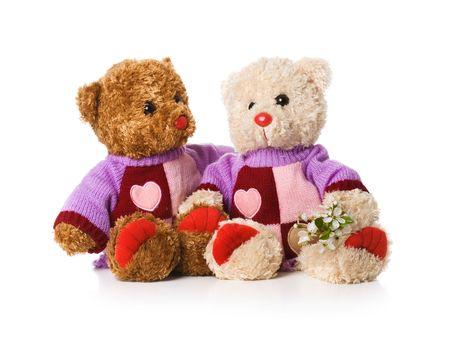 Dos amantes de osos de peluche