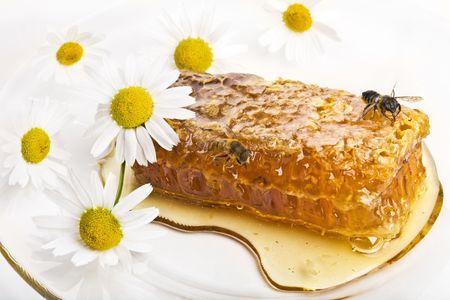 Las abejas, panales e infusiones