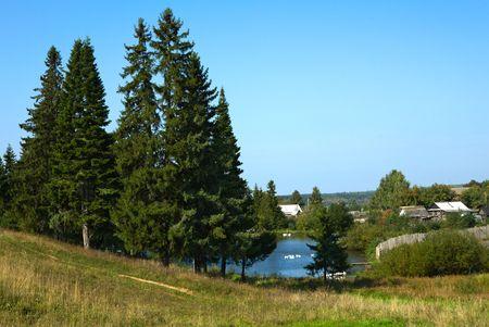 rurale: Rural landscape with a pond