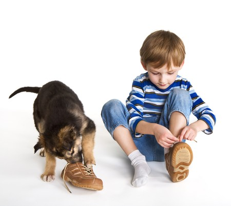 shoelaces: Child, puppy and shoes Stock Photo