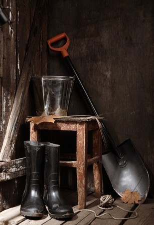 Garden tools in shed photo