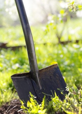 spades: Close up of garden shovel