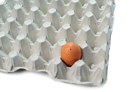One brown egg in packing for eggs photo