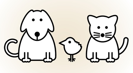 dog and cat: Pets