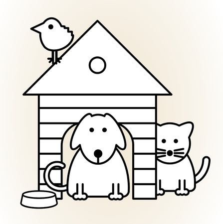 puppy and kitten: Pets