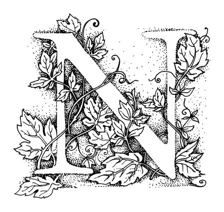 abc calligraphy: Letter N  Alphabet symbol, hand draw illustration Illustration