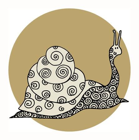 Snail Stock Vector - 16950240