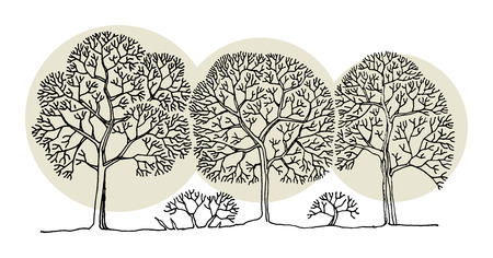 remarkable: Hand drawing sketch of tree, vector