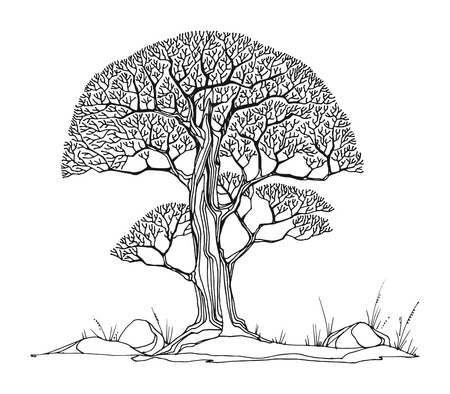 tree of life silhouette: Hand drawing sketch of tree, vector illustration Illustration