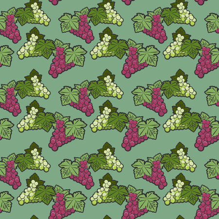 Seamless pattern, grappe theme, vector illustration