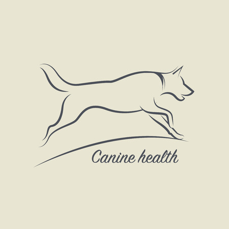 dog outline: Dog health symbol, vector illustration Illustration