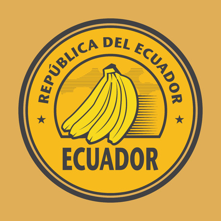 consulate: Stamp with the bananas and name of Ecuador, vector illustration Illustration
