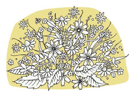 flowers on white background, illustration