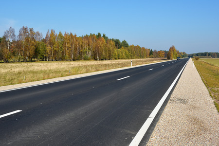 New asphalt road through the autumn woods Reklamní fotografie