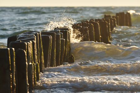 Water hits the wooden piles driven into the sea, old wooden pier on Baltic Sea at sunset