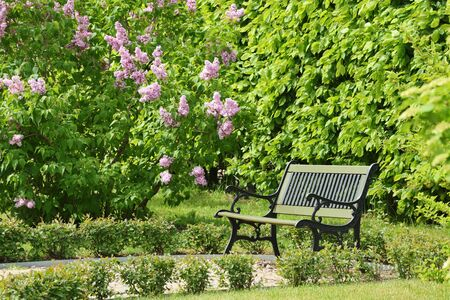 Details of French garden, Park in Rundale Palace, Latvia