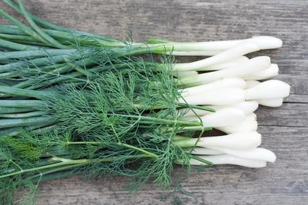 heathy: Green leek with dill, heathy fresh food
