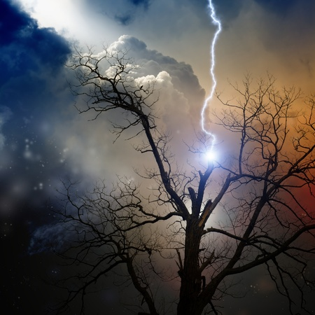 Dramatic background - tree struck by lightning from dark sky photo