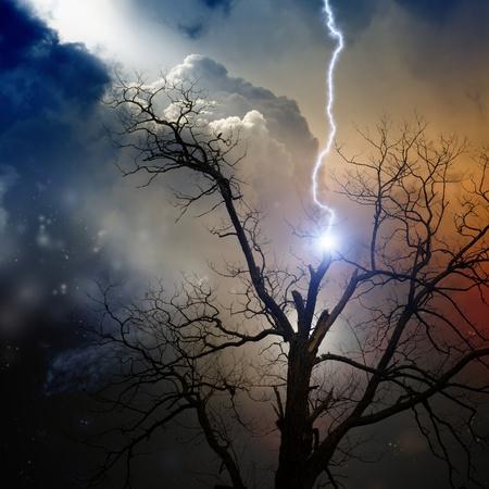 Dramatic background - tree struck by lightning from dark sky photo