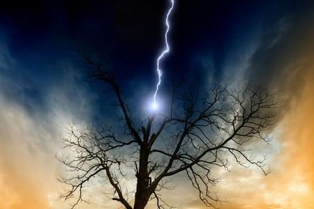 struck: Dramatic background - tree struck by lightning from dark sky Stock Photo