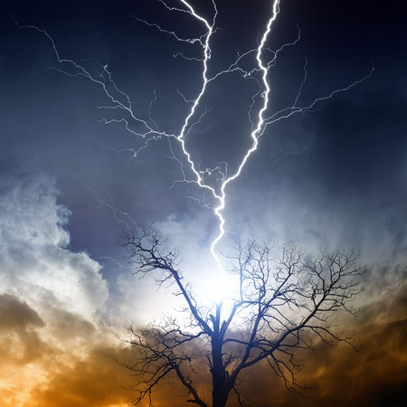 Nature force background - tree struck by lightning from dark sky photo