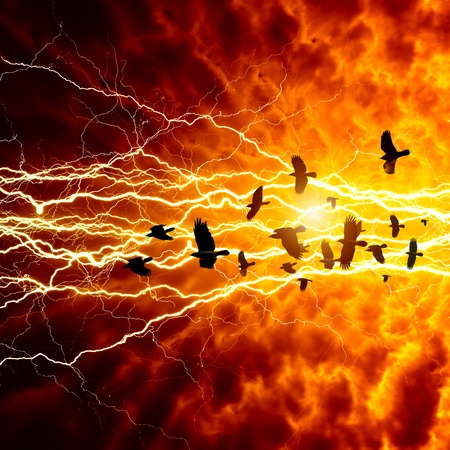 Flock of flying ravens, crows in dark sky, bright lightning, end of world Stock Photo - 16661942