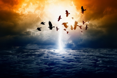 Dramatic apocalyptic background, mayan end of world, bright lightning, flock of flying ravens, crows in dark sky, armageddon   Stock Photo - 17032457
