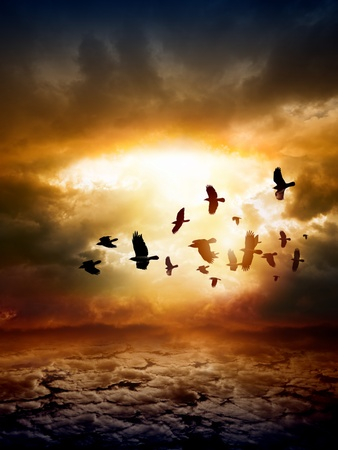 Dramatic apocalyptic background, mayan end of world, red sunset, armageddon, hell, big explosion, flock of flying ravens, crows in dark sky photo