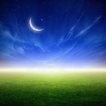 Peaceful sunset background - green grass field, moon and stars in dark blue sky. Elements of this image furnished by NASA
