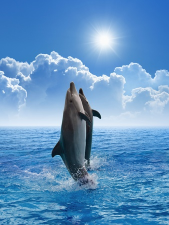Couple jumping dolphins, blue sea and sky, white clouds, bright sun