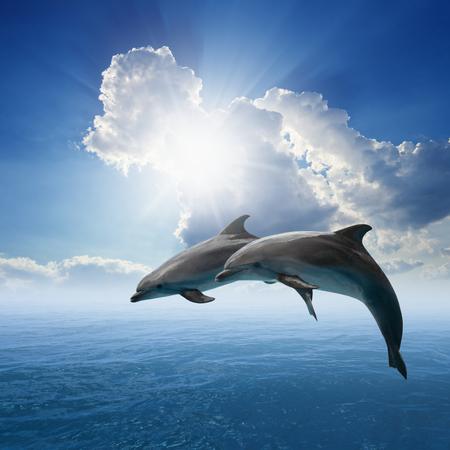 Paar springen dolfijnen, blauwe zee en lucht, witte wolken, felle zon Stockfoto
