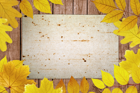 Old dirty paper sheet, brown wooden textured board, yellow maple and oak leaves photo