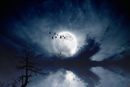 Night sky with full moon, flock of flying ravens, crows, old tree; reflection in water. Elements of this image furnished by NASA photo
