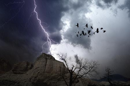raven: Dramatic nature force background - bright lightning in dark stormy sky, broken tree, flock of raven