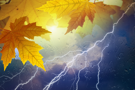 dark skies: Seasonal autumn background, collage with yellow leaves outside window glass with rain drops, stormy rainy weather with lightning in dark skies. Season is fall. Stock Photo