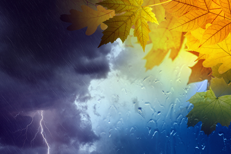 rain weather: Seasonal autumn background, collage with orange and yellow leaves outside window glass with rain drops, stormy rainy weather with lightning in dark clouds. Season is fall. Stock Photo