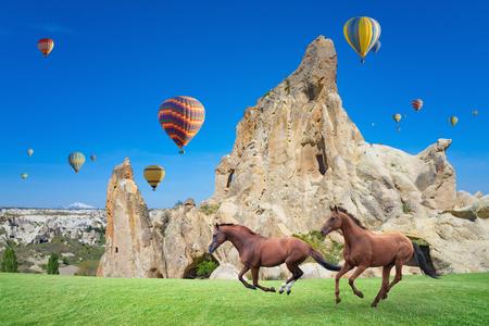 Hot air ballooning is most popular attraction in Kapadokya. Two horses running on green grass near mushroom mountains in Cappadocia, Turkey. Stock Photo