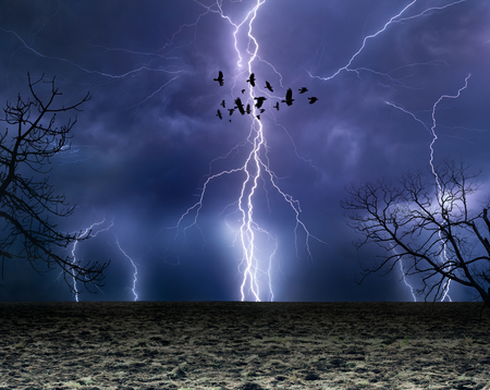 Powerful lightnings in dark stormy sky, flock of flying ravens, weather forecast concept, climate change background Stock Photo