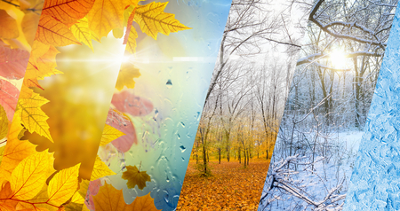 Beautiful seasonal background - two seasons of year collage. Vibrant colorful images of different time of year - fall and winter. Weather forecast concept. Standard-Bild