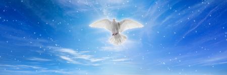 Heilige geest vogel daalt neer uit de lucht, helder licht schijnt uit de hemel, witte duif is symbool van liefde en vrede Stockfoto
